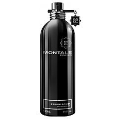 Montale Steam Aoud 1/1