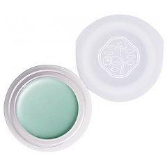 Shiseido Paperlight Cream Eye Color 1/1