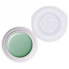 Shiseido Paperlight Cream Eye Color 1/1