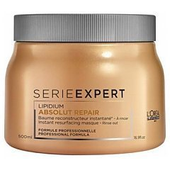 L'Oreal Professionnel Serie Expert Lipidium Absolut Repair Masque 1/1