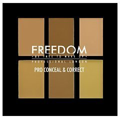 Freedom Pro Conceal & Correct 1/1