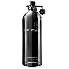 Montale Aoud Lime tester 1/1